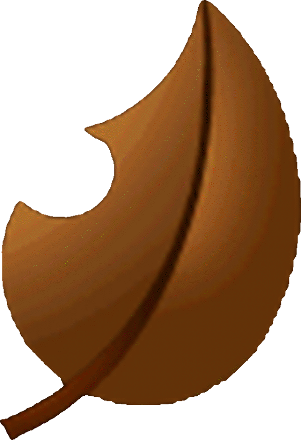 Brown Super Leaf - Mario Kart Wii.png