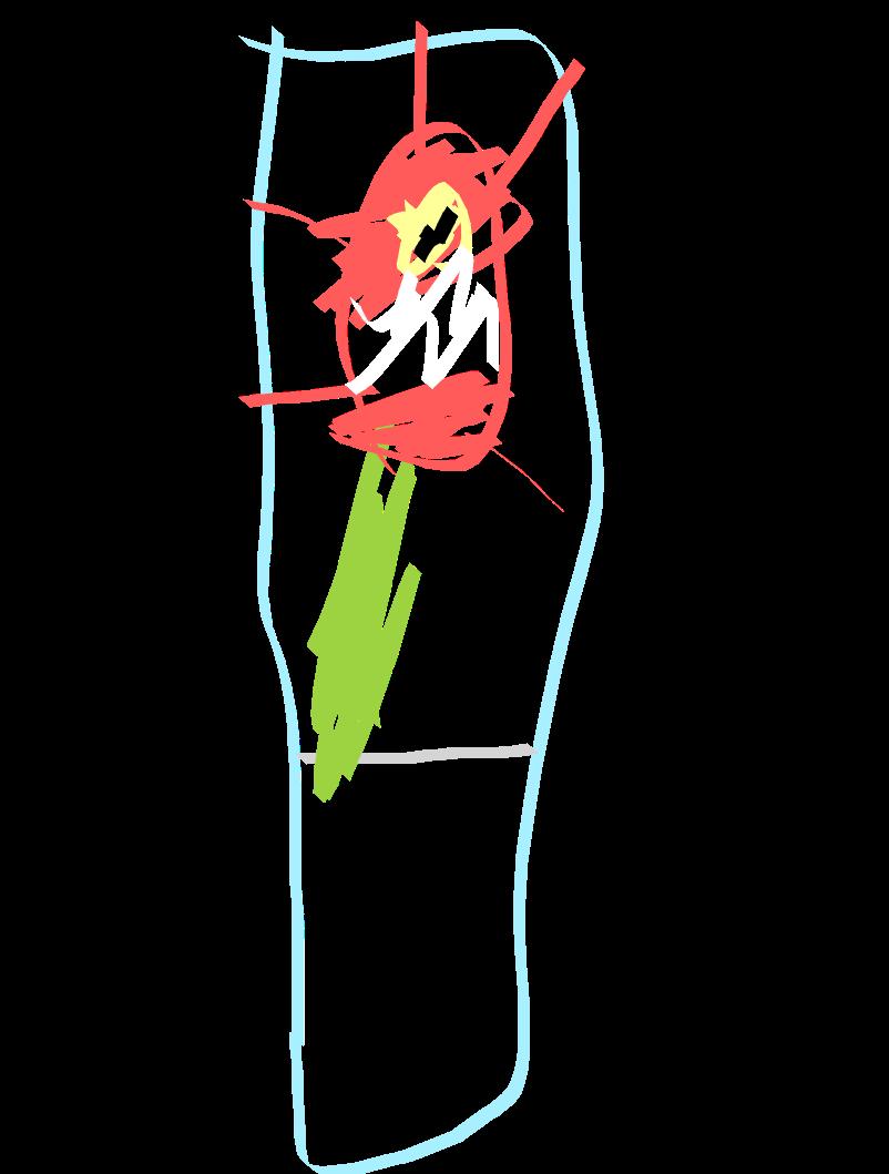 Drawing (6).png